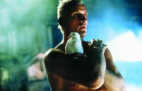 Blade Runner is vastly different from the book, and each have their own considerable merits.